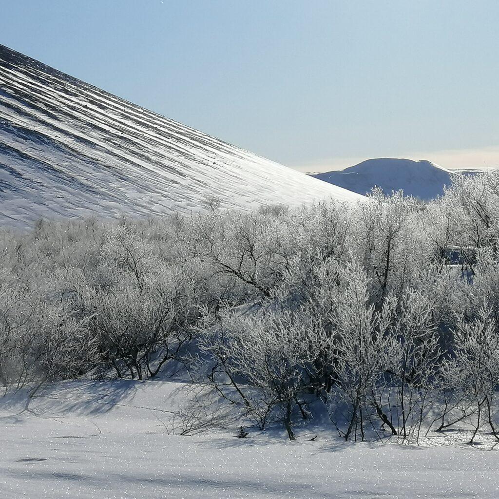 Aurore boreali islanda myvatn vulcano hjverfell naturaviaggi 1024x1024 L Islanda davvero un posto magico