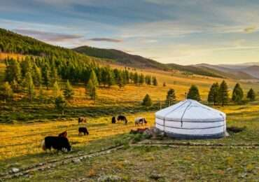 Gher camp 2 370x260 Mongolia