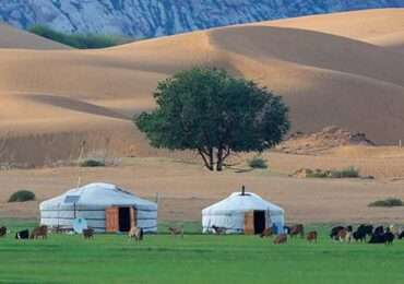 Mongolia wuaw 370x260 Mongolia