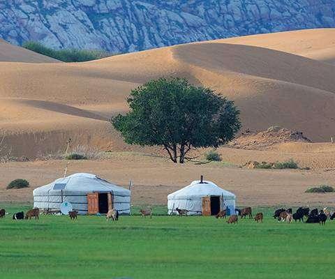 Viaggio in MONGOLIA, tutto quello che ti immagini in 16 giorni, partenza 29 agosto 2021