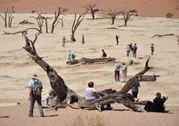 Namibia sassusvlei alberi fossili naturaviaggi 1 370x260 Namibia Grand Tour nell 8217 Africa mistica