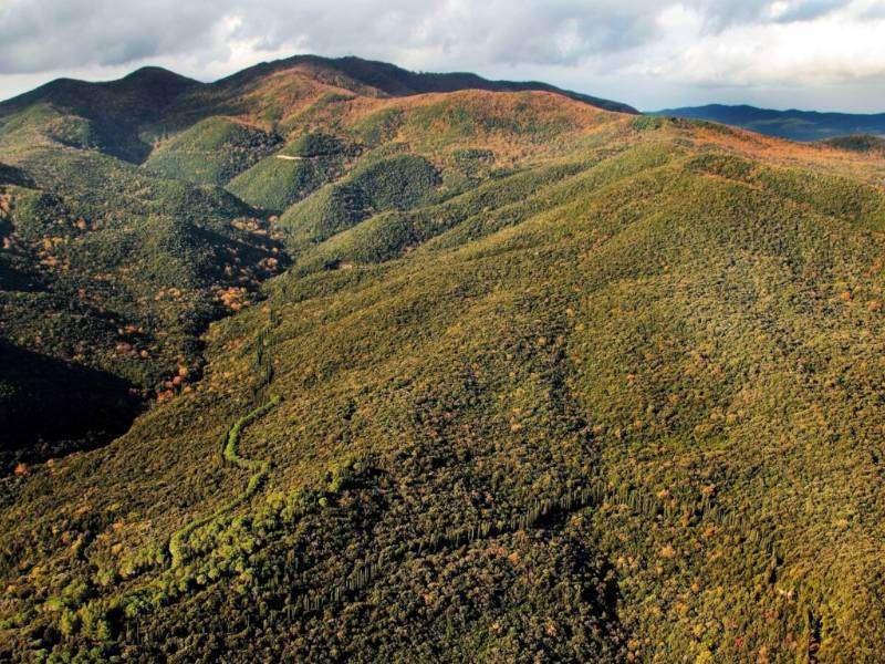 Parco delle colline livornesi 1 Proposte escursioni giornaliere in Toscana